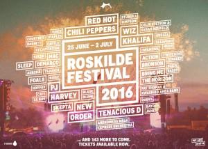 4035313_Roskilde