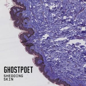 Ghostpoet Shedding Skin